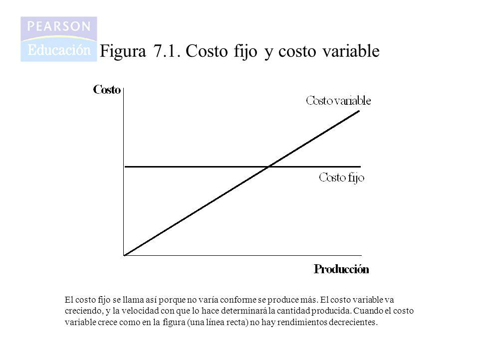 Figura 7.1. Costo fijo y costo variable