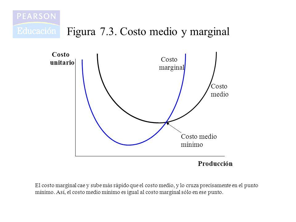 Figura 7.3. Costo medio y marginal