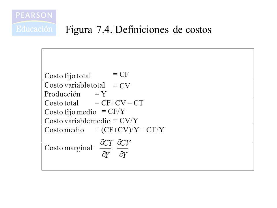 Figura 7.4. Definiciones de costos