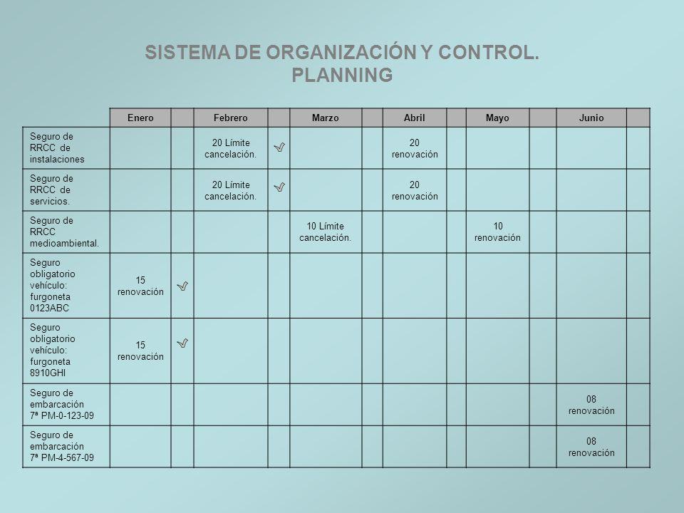 SISTEMA DE ORGANIZACIÓN Y CONTROL. PLANNING