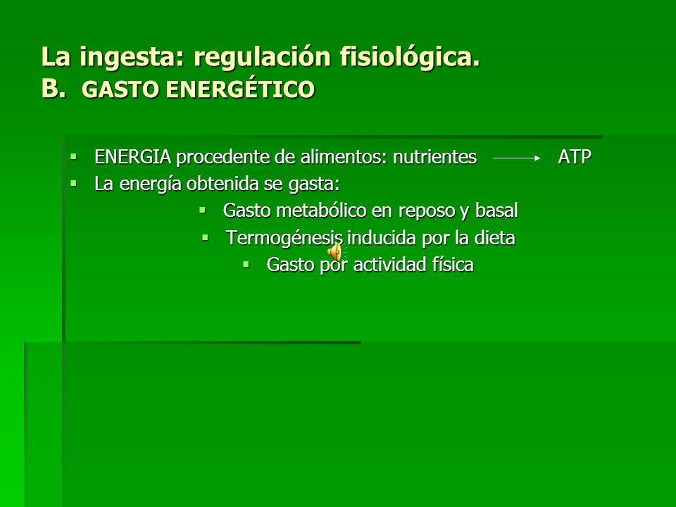 La ingesta: regulación fisiológica. B. GASTO ENERGÉTICO