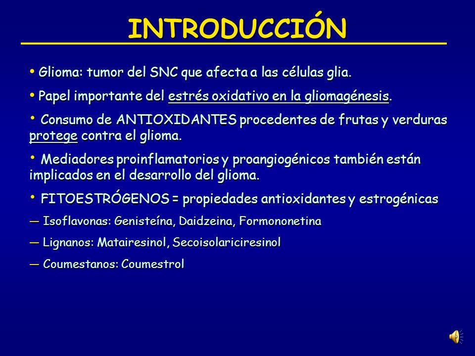 INTRODUCCIÓN Glioma: tumor del SNC que afecta a las células glia. Papel importante del estrés oxidativo en la gliomagénesis.