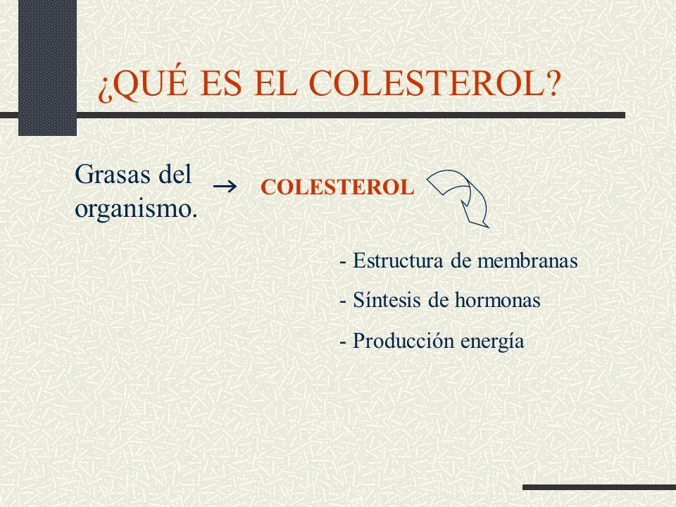 ¿QUÉ ES EL COLESTEROL Grasas del organismo. COLESTEROL