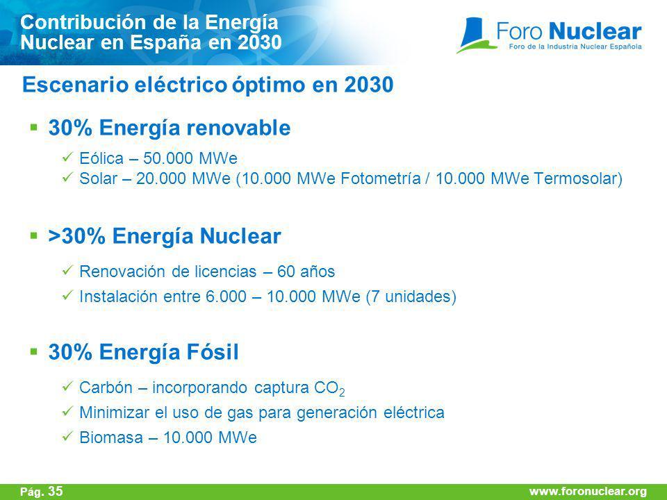 Escenario eléctrico óptimo en 2030