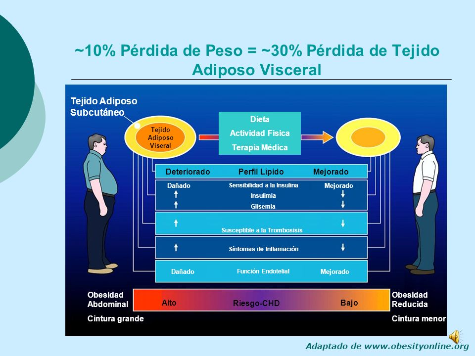 ~10% Pérdida de Peso = ~30% Pérdida de Tejido Adiposo Visceral