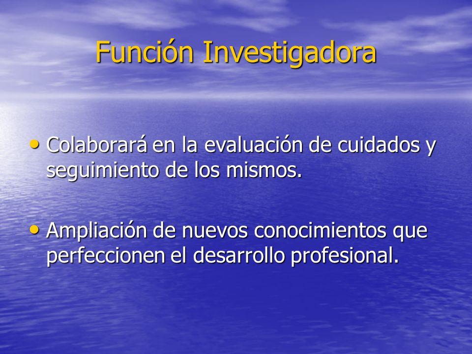 Función Investigadora