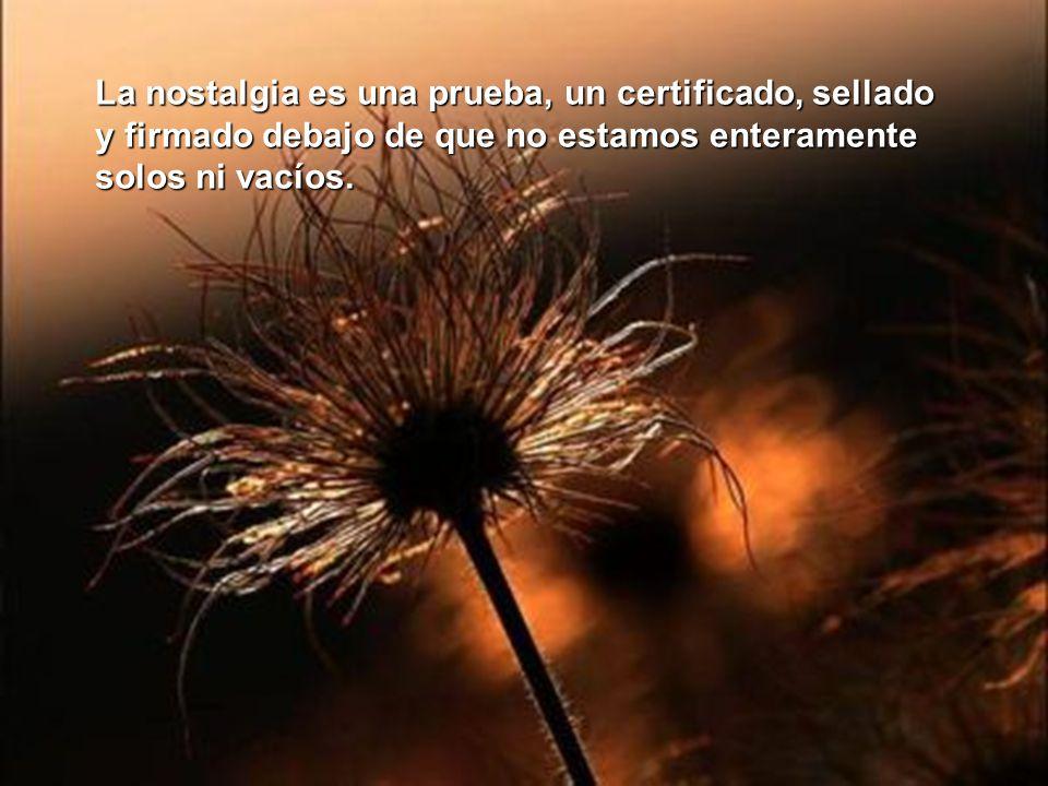 La nostalgia es una prueba, un certificado, sellado y firmado debajo de que no estamos enteramente solos ni vacíos.