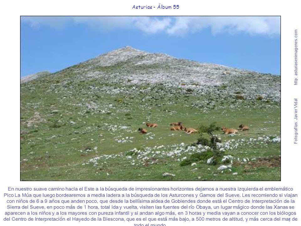 Asturias - Álbum 55 Fotografías: Javier Vidal http: asturiasenimagenes.com.