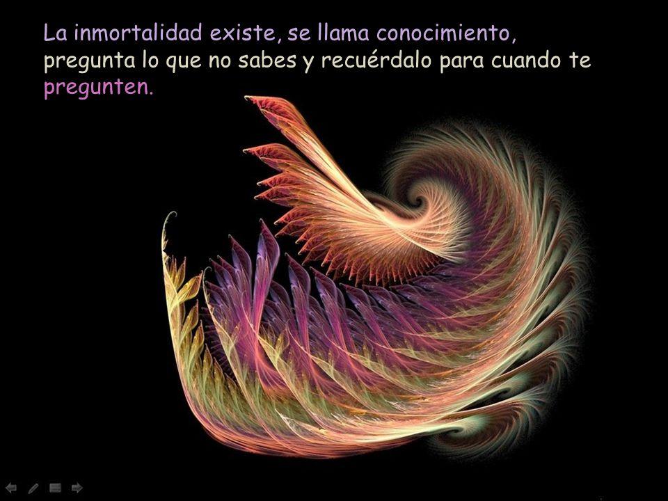 La inmortalidad existe, se llama conocimiento, pregunta lo que no sabes y recuérdalo para cuando te pregunten.