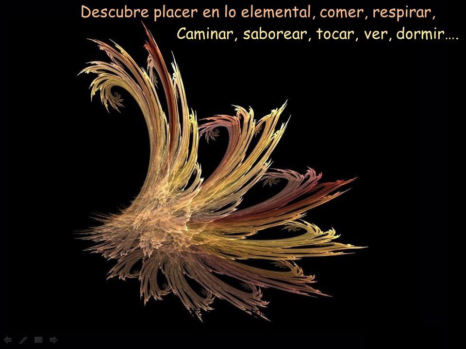 Descubre placer en lo elemental, comer, respirar,