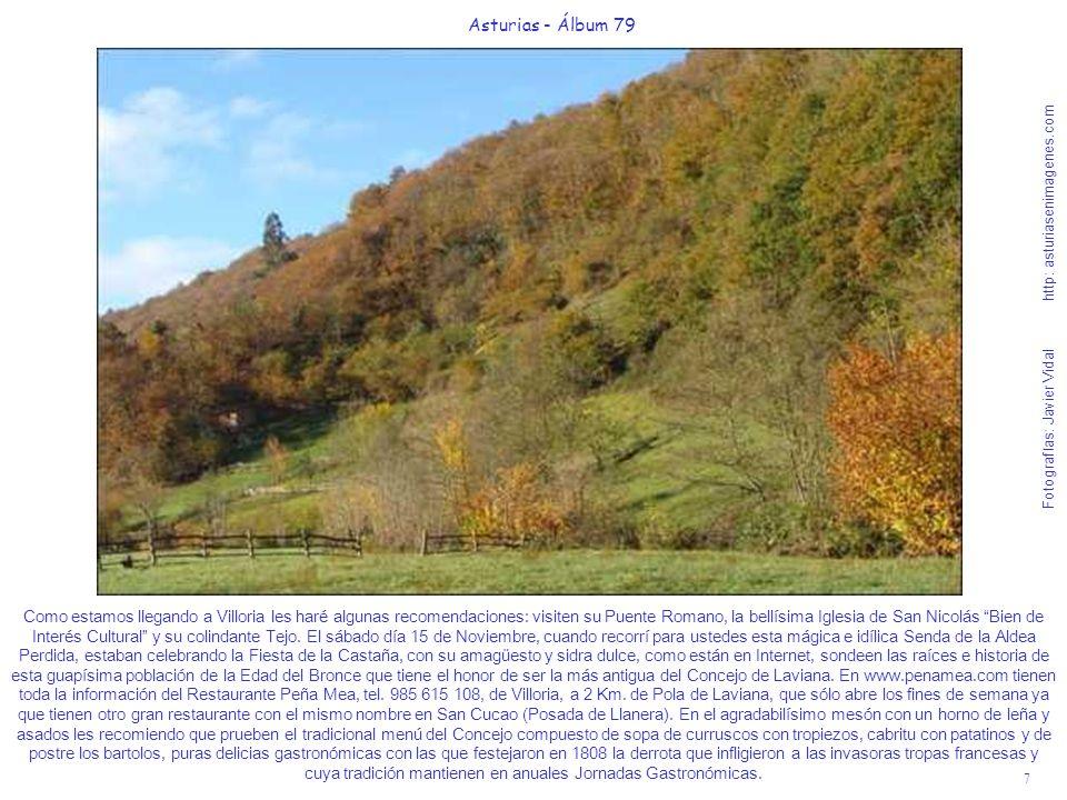 Asturias - Álbum 79 Fotografías: Javier Vidal http: asturiasenimagenes.com.