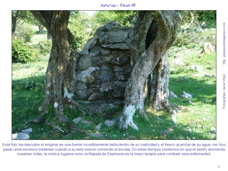 Asturias - Álbum ññ Fotografías: Javier Vidal http: asturiasenimagenes.com.