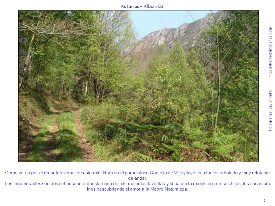 Asturias - Álbum 83