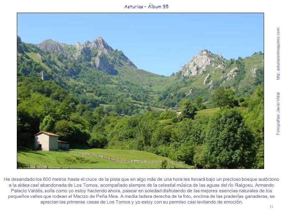 Asturias - Álbum 95 Fotografías: Javier Vidal http: asturiasenimagenes.com.