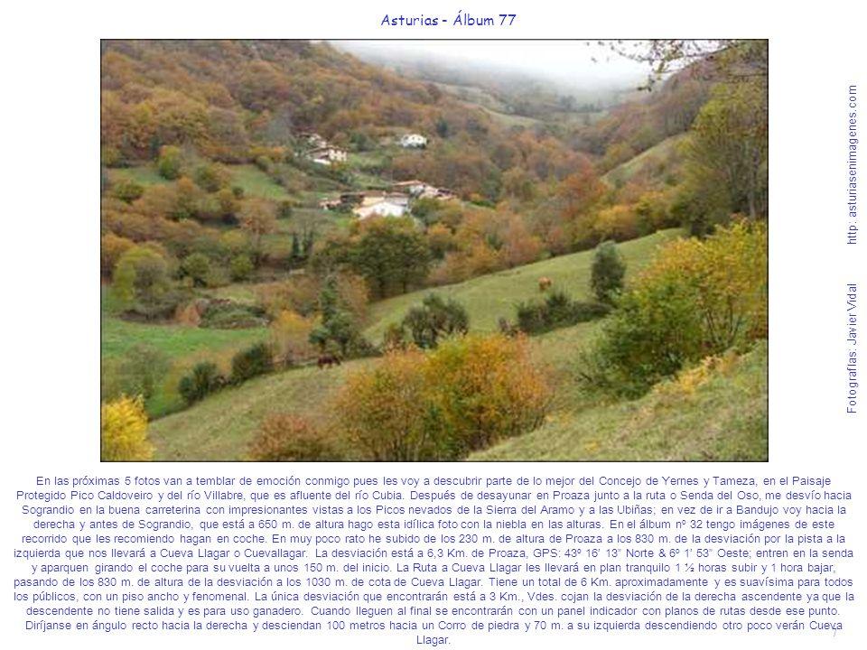 Asturias - Álbum 77 Fotografías: Javier Vidal http: asturiasenimagenes.com.