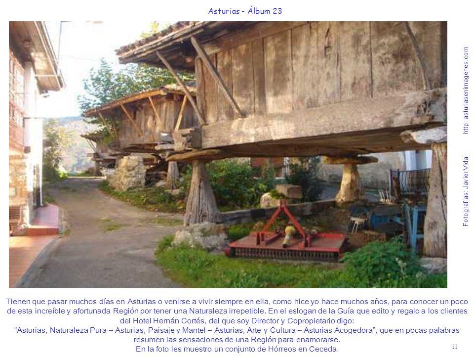 En la foto les muestro un conjunto de Hórreos en Ceceda.