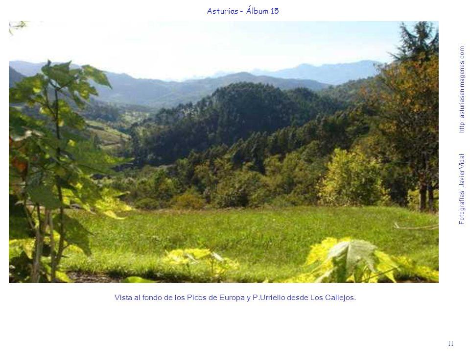 Vista al fondo de los Picos de Europa y P.Urriello desde Los Callejos.
