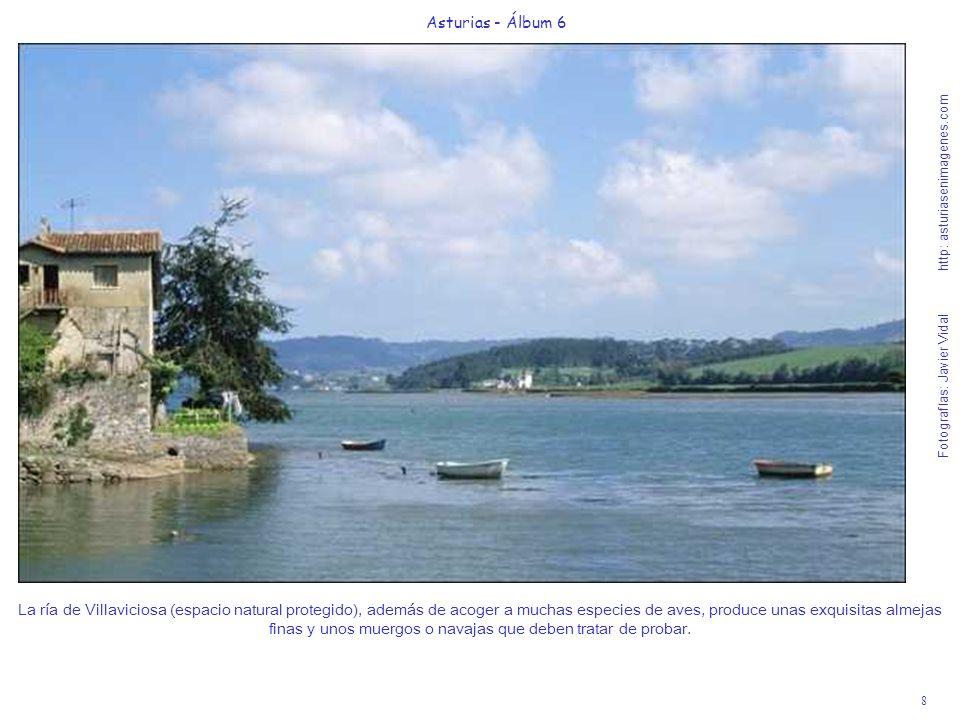 Asturias - Álbum 6