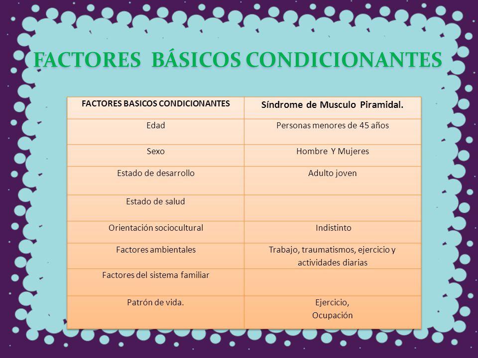 FACTORES BÁSICOS CONDICIONANTES