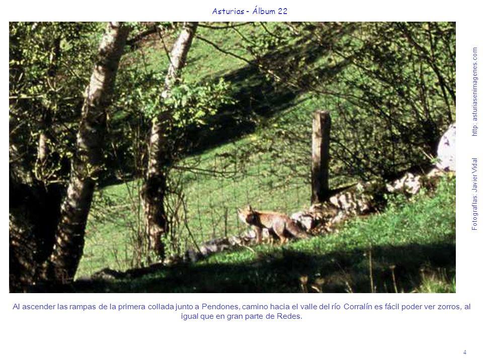 Asturias - Álbum 22