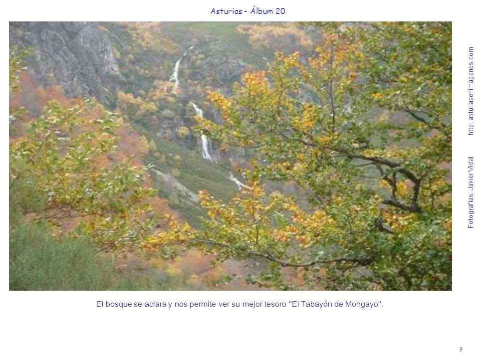 Asturias - Álbum 20