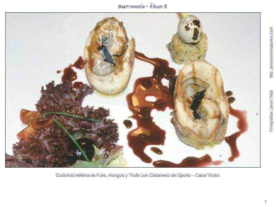 Gastronomía - Álbum 5
