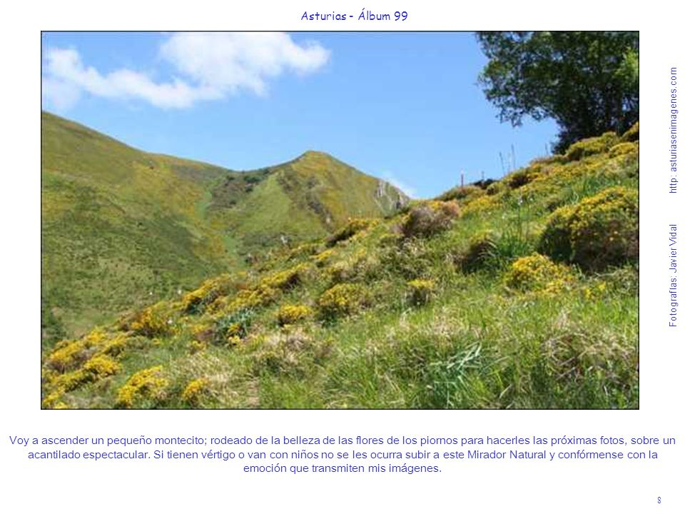 Asturias - Álbum 99 Fotografías: Javier Vidal http: asturiasenimagenes.com.