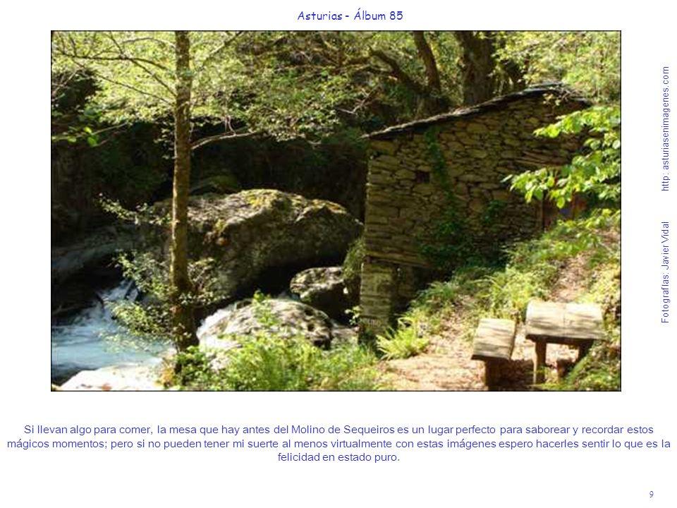 Asturias - Álbum 85 Fotografías: Javier Vidal http: asturiasenimagenes.com.