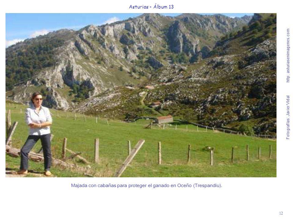 Majada con cabañas para proteger el ganado en Oceño (Trespandiu).