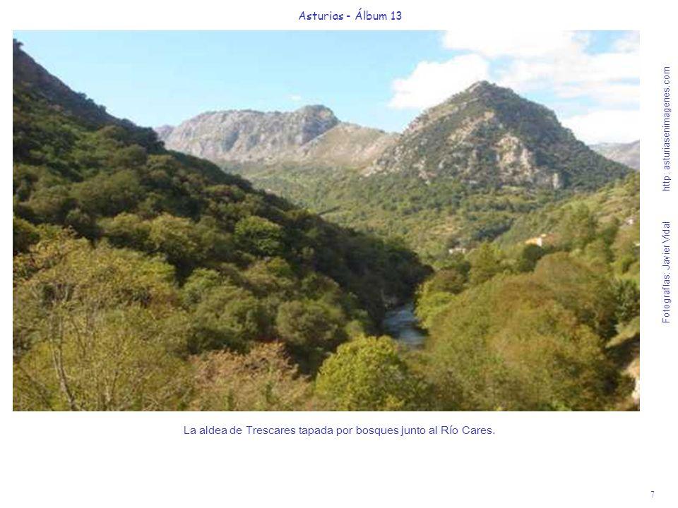 La aldea de Trescares tapada por bosques junto al Río Cares.