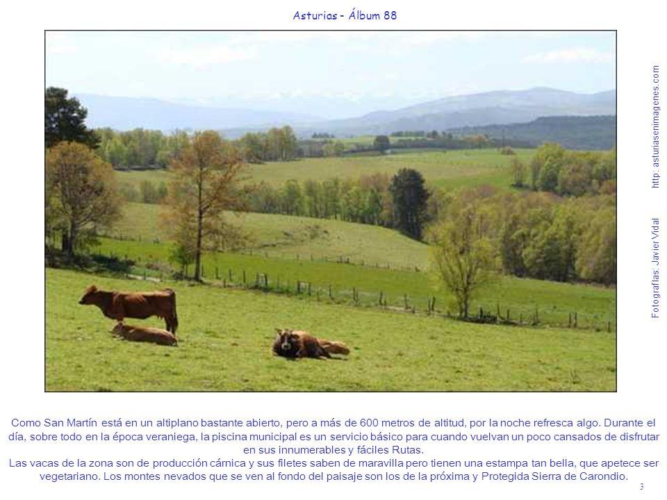 Asturias - Álbum 88 Fotografías: Javier Vidal http: asturiasenimagenes.com.