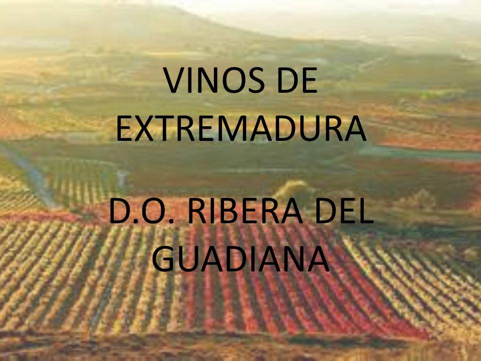 VINOS DE EXTREMADURA D.O. RIBERA DEL GUADIANA