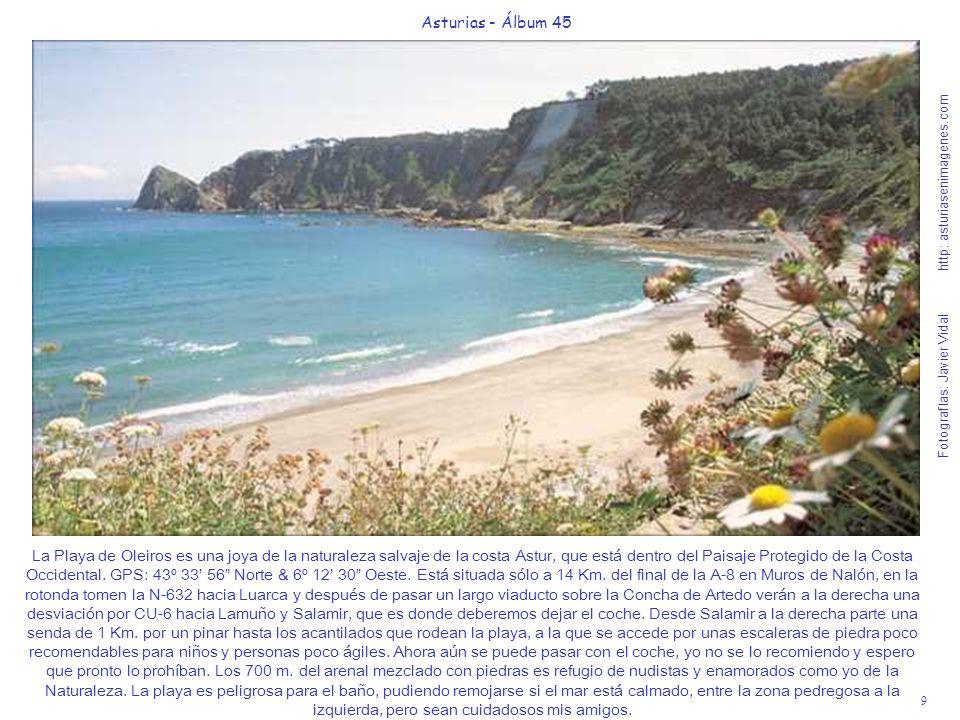 La Playa de Oleiros es una joya de la naturaleza salvaje de la costa Astur, que está dentro del Paisaje Protegido de la Costa Occidental. GPS: 43º 33' 56 Norte & 6º 12' 30 Oeste. Está situada sólo a 14 Km. del final de la A-8 en Muros de Nalón, en la rotonda tomen la N-632 hacia Luarca y después de pasar un largo viaducto sobre la Concha de Artedo verán a la derecha una desviación por CU-6 hacia Lamuño y Salamir, que es donde deberemos dejar el coche. Desde Salamir a la derecha parte una senda de 1 Km. por un pinar hasta los acantilados que rodean la playa, a la que se accede por unas escaleras de piedra poco recomendables para niños y personas poco ágiles. Ahora aún se puede pasar con el coche, yo no se lo recomiendo y espero que pronto lo prohíban. Los 700 m. del arenal mezclado con piedras es refugio de nudistas y enamorados como yo de la Naturaleza. La playa es peligrosa para el baño, pudiendo remojarse si el mar está calmado, entre la zona pedregosa a la izquierda, pero sean cuidadosos mis amigos.
