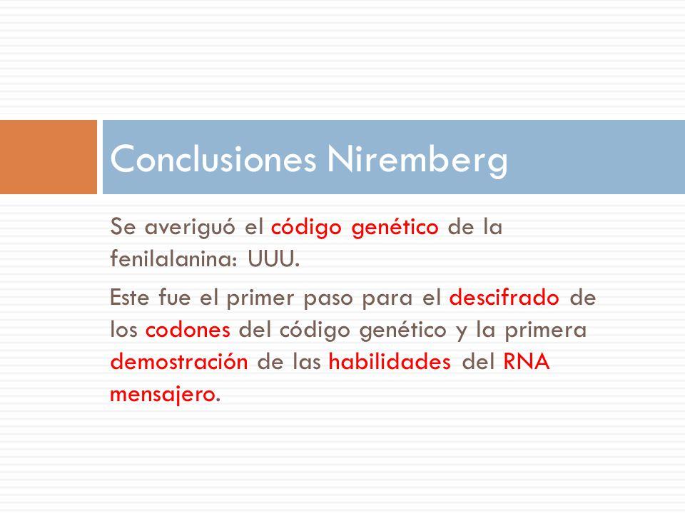 Conclusiones Niremberg