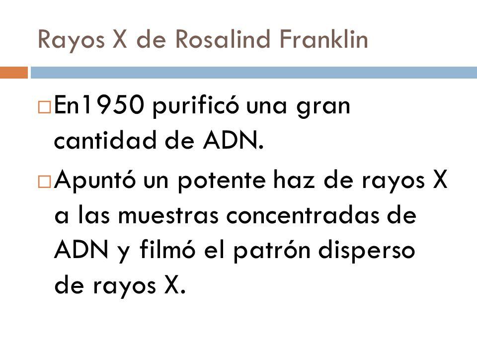 Rayos X de Rosalind Franklin