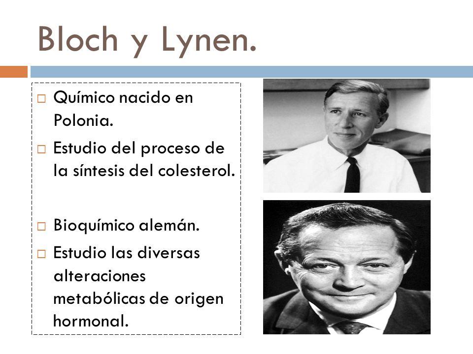 Bloch y Lynen. Químico nacido en Polonia.