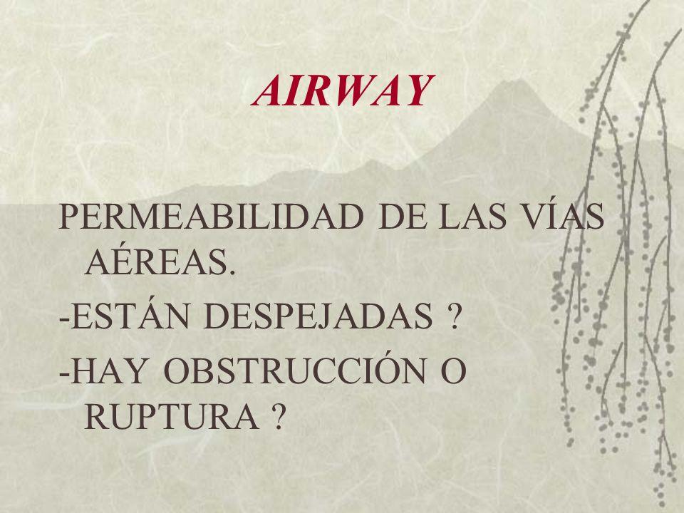 AIRWAY PERMEABILIDAD DE LAS VÍAS AÉREAS. -ESTÁN DESPEJADAS