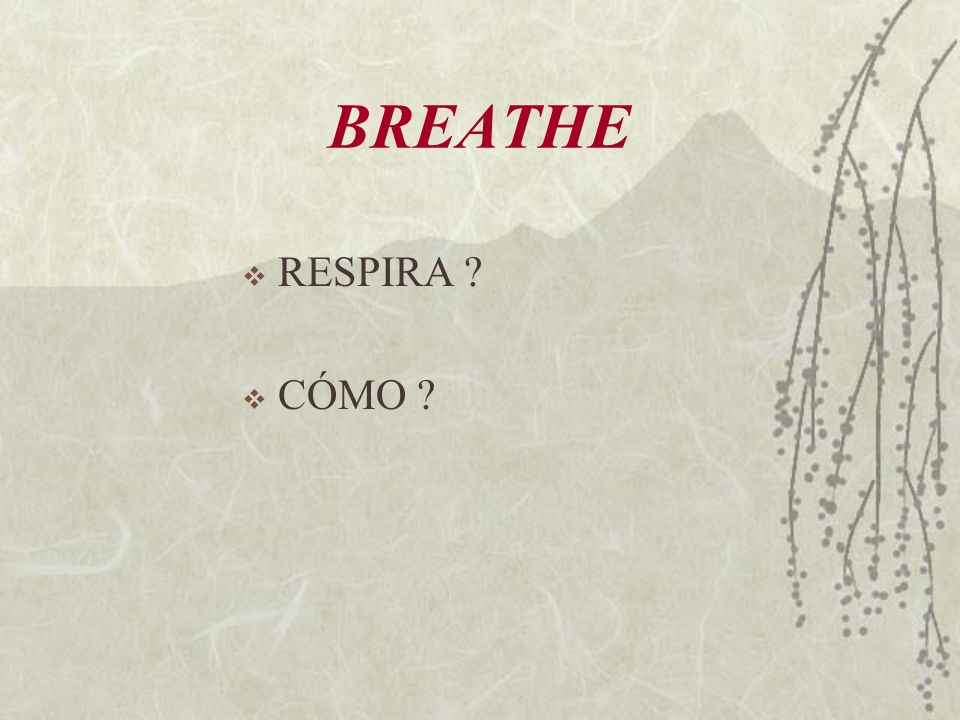 BREATHE RESPIRA CÓMO