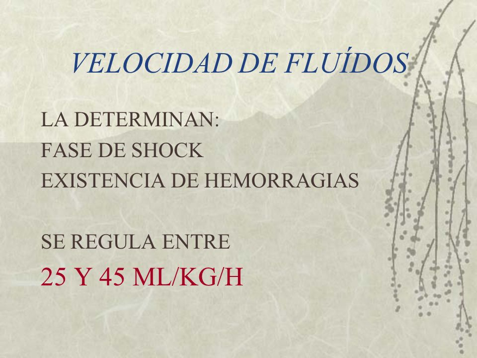 VELOCIDAD DE FLUÍDOS 25 Y 45 ML/KG/H LA DETERMINAN: FASE DE SHOCK