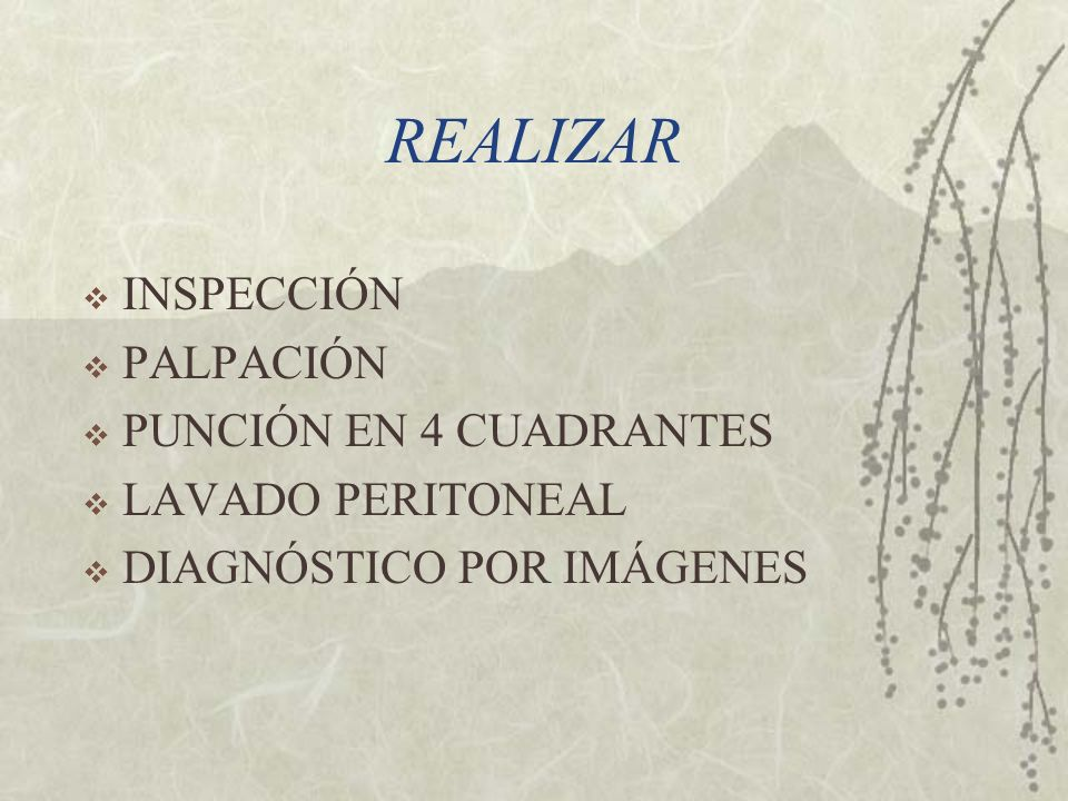 REALIZAR INSPECCIÓN PALPACIÓN PUNCIÓN EN 4 CUADRANTES