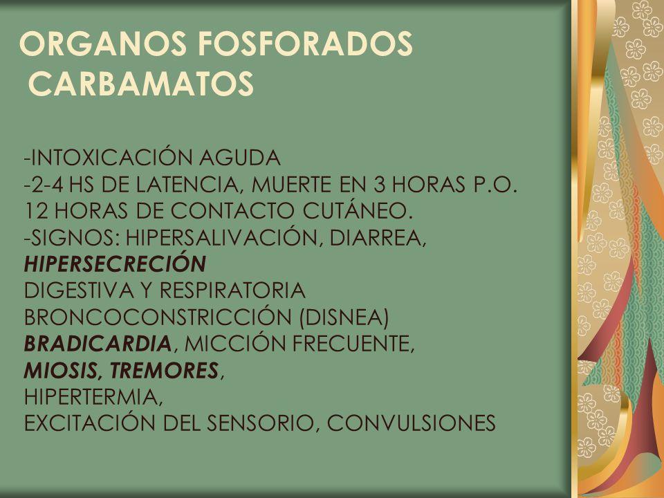 ORGANOS FOSFORADOS CARBAMATOS -INTOXICACIÓN AGUDA