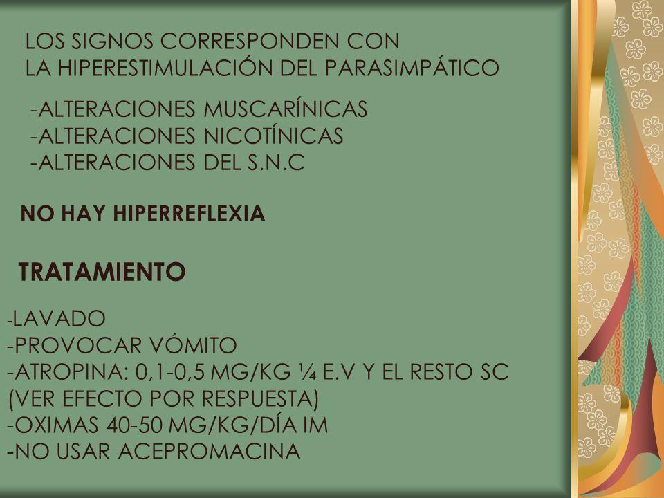 TRATAMIENTO LOS SIGNOS CORRESPONDEN CON