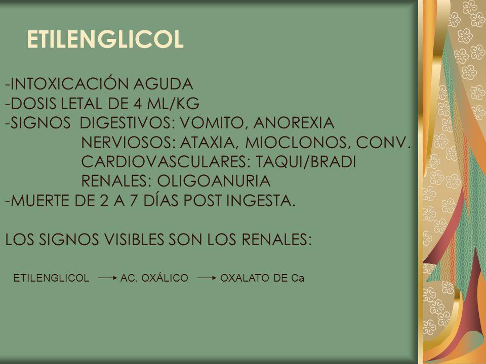 ETILENGLICOL -INTOXICACIÓN AGUDA -DOSIS LETAL DE 4 ML/KG