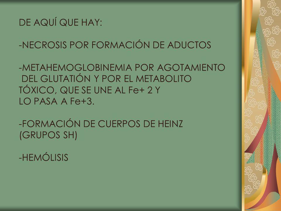 DE AQUÍ QUE HAY: -NECROSIS POR FORMACIÓN DE ADUCTOS. -METAHEMOGLOBINEMIA POR AGOTAMIENTO. DEL GLUTATIÓN Y POR EL METABOLITO.