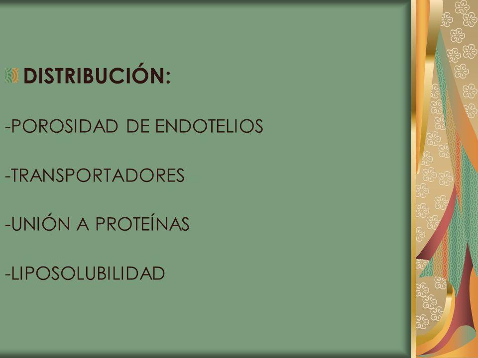DISTRIBUCIÓN: -POROSIDAD DE ENDOTELIOS -TRANSPORTADORES