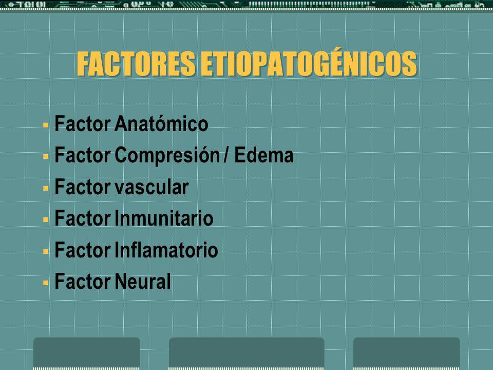 FACTORES ETIOPATOGÉNICOS