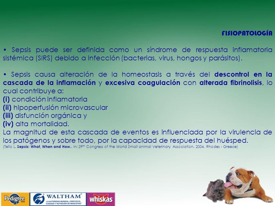 (i) condición inflamatoria (ii) hipoperfusión microvascular