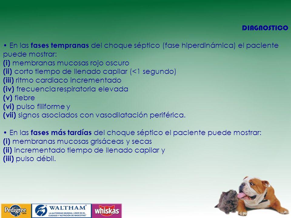 DIAGNOSTICO • En las fases tempranas del choque séptico (fase hiperdinámica) el paciente puede mostrar: