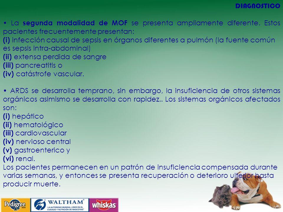 DIAGNOSTICO • La segunda modalidad de MOF se presenta ampliamente diferente. Estos pacientes frecuentemente presentan: