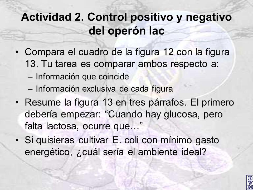 Actividad 2. Control positivo y negativo del operón lac